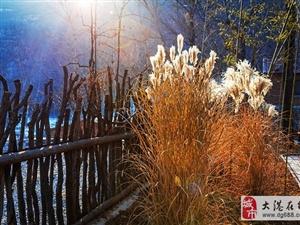 带着家人去山谷里—吃火盆锅、睡大炕、玩冰雪乐园!