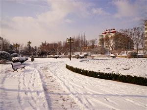 梨乡雪景美