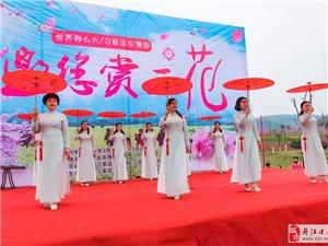 三花节魅力旗袍秀
