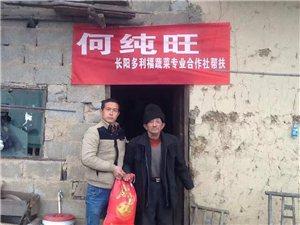 长阳多利福蔬菜专业合作社帮扶村民见行动