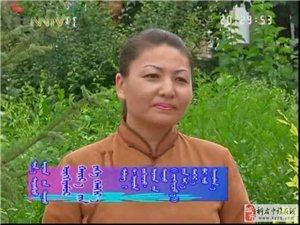 王布和之歌――白妞演唱