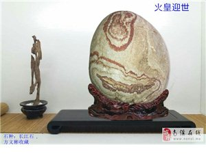 南溪石友的长江石4