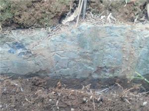 澳门新葡京赌场大观堡(新田大冠堡)堡主发现了,找到明代石玉生墓