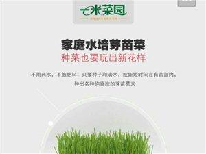 山东菜官儿农业科技发展有限澳门网上投注官网 招聘