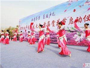 2017河北卢龙旅发大会・首届赏花节在卢龙县棋盘山景区开幕