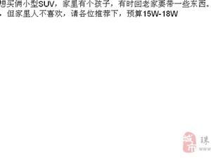想�I�z小型SUV �A算15W-18W