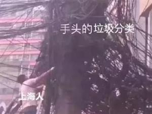 "垃圾分�""逼��""上海人?�e笑!�R上�到重�c人…"