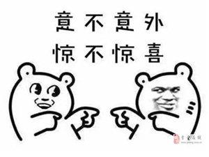 冰爽夏日�F���