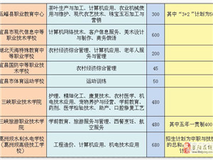 ���2019中�教育招生����l布