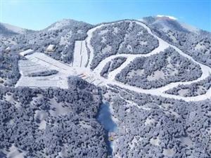 """哇,好一��冰雪世界!衢州�@��""""�W�t地""""上�⒔�滑雪�\�庸��@"""