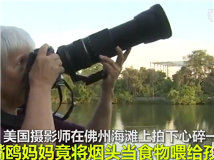 美摄影师拍下心碎一幕:雏鸟直接将垃圾吞下