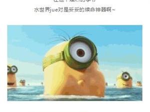 惊爆!桐城活海推出季卡门票!不限时间、次数随便玩!