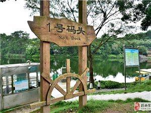 游玩京明度假村