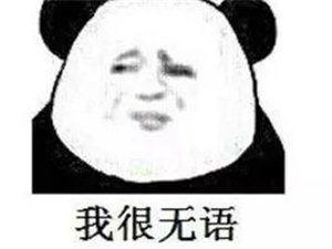 【�嶙h】�@��化州仔出名了,竟�@�由狭巳嗣袢�蠖兑�