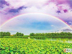 """雨后的""""彩虹桥!"""