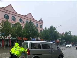 博兴街头的一抹绿,给人满满的安全感!