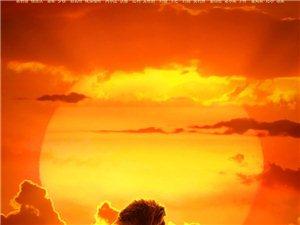 7.12《狮子王》领先全球,王者归来|恒推荐