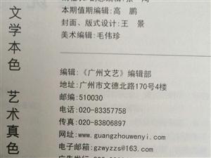 中国大型文学刊物投稿地址