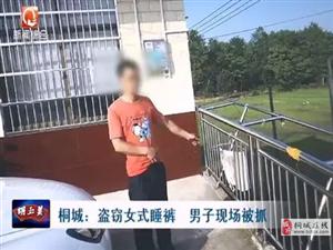 桐城男子盗窃女式睡裤现场被抓,被判行政拘留10日