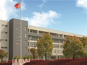 滁州海亮学校课程设置