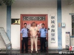 桐城一男子顺手牵羊偷手机被拘留10日