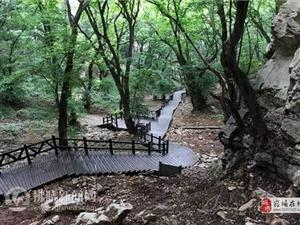 皇藏峪��家森林公�@入�x安徽避暑旅游目的地