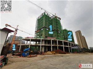 恒泰花园2019年7月最新施工进度