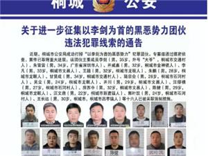 通告丨关于进一步征集以桐城李剑为首的黑恶势力团伙违法犯罪线索的通告