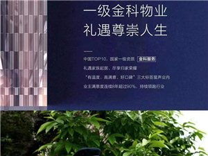 【鑫源・万盛公馆】一级金科物业,礼遇尊崇人生