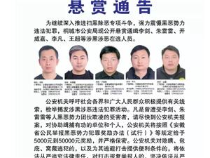 桐城市公安局公开悬赏通缉多名黑恶犯罪嫌疑人,最高悬赏5万元