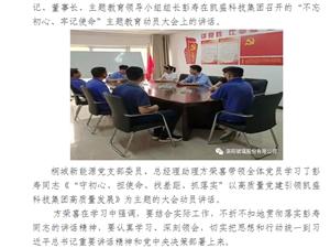"""桐城新能源党支部组织学习""""不忘初心、牢记使命""""主题教育讲话精神"""