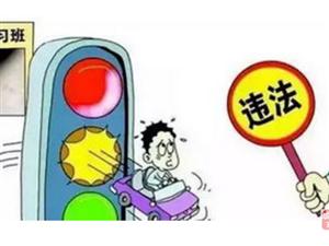 �M分教育和���教育不一�樱∧氵�分不清楚�幔�