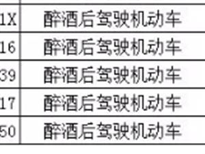 桐城上周15人酒驾名单曝光