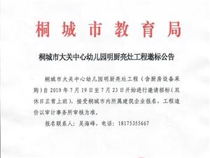 桐城市大关中心幼儿园明厨亮灶工程邀标公告