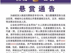 桐城公安局发布悬赏通告,最高奖励50000元!