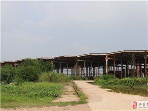 金口老船厂