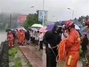 汉中宁强一头水牛被困河中 众人合力救援