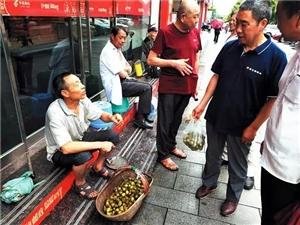 """�S都�@位村民靠大山的野生植物、食品""""淘金"""",年收入竟�@么多……"""