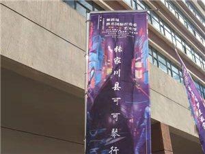 可可琴行小鼓手荣摘第四届西北国际打击乐艺术节大奖