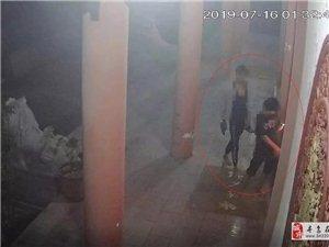 寻乌打掉一跨县盗窃团伙,偷手机、盗汽油、撬功德箱,已抓获归案,为民警点赞!