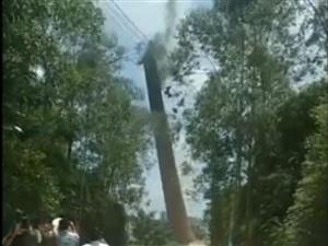 化州那务一废弃红砖厂烟囱被爆破拆除
