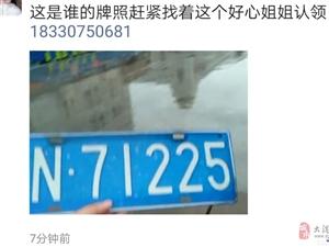 大雨过后 大港人的车牌照丢了来这里找!