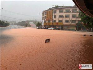 一下大雨成�S河