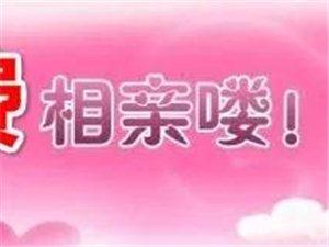 【城缘相亲】8月4日乐达金马免费相亲,千里挑一,牵手过七夕!