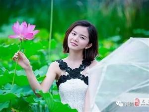【巴彦网原创文学】散文:七月赏荷勿忘我-郑旭东