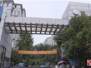 仁寿这个小区的八楼被淹,原因正和违章搭建有关!