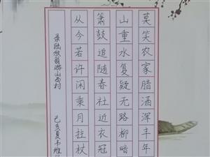"""我县中小学生书法作品在""""第二十四届全国中小学生书法绘画作品比赛""""获奖"""