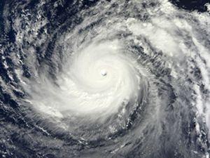 """超强台风""""利奇马""""来了......"""