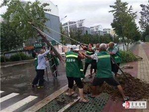 狂�L暴雨中!莒�h的�@些身影,��!