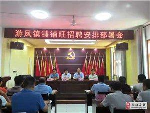 武功县苏坊镇、游凤镇召开铺铺旺集团招聘工作动员大会